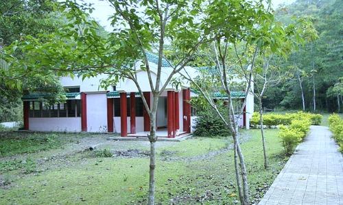 Foundation research and development center care philippine-tarsier