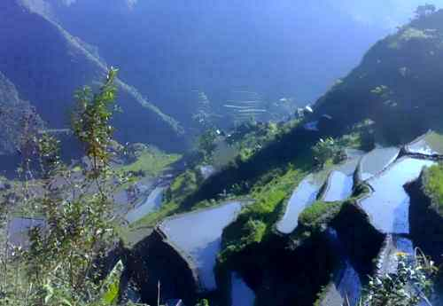 batad rice terraves care ifugao