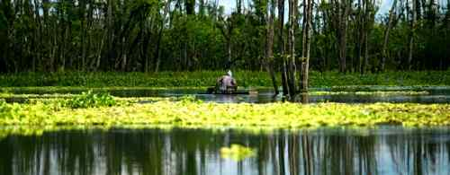 Agusan marsh care philippine-provinces