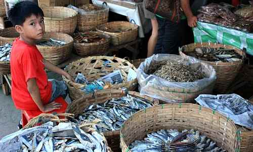 Banica Dried Fish Market