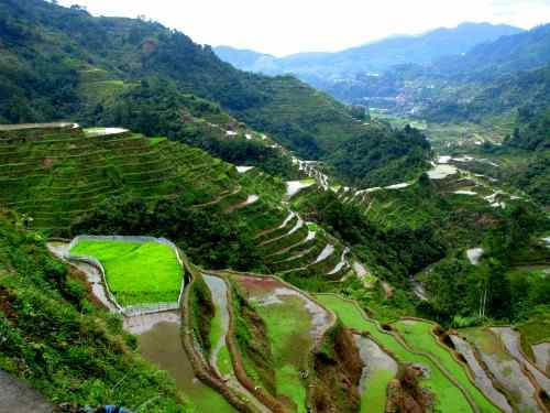 Banaue rice terraces care philippines vacation