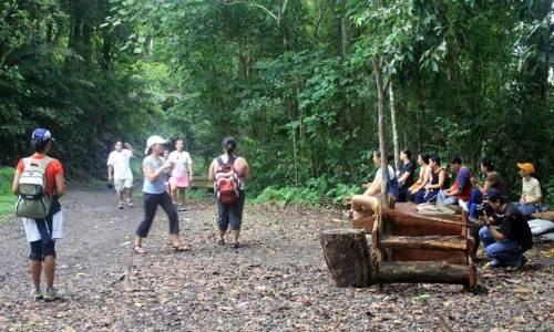 Makiling Forest Reserve Park