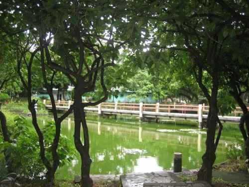 Japanese Garden & Lagoon