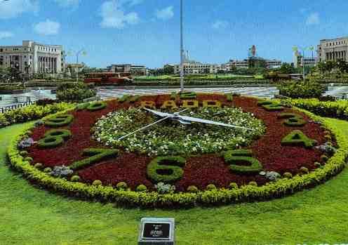 Rado Flower Clock