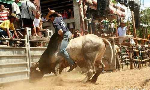 Masbate rodeo care philippine-provinces
