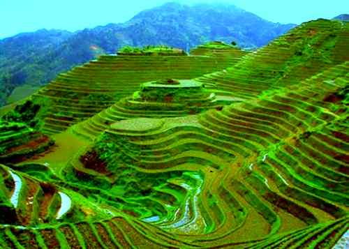 Banaue rice terraces gem of philippine-provinces