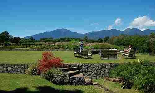 Vista of a Bukidnon farm estate backyard