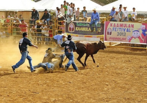 kaamulan-rodeo